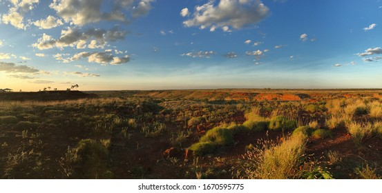 Panoramic view over red desert landscape at sunset from the camping site at Ngumban Cliff rest area, Great Northern Highway, Mueller Ranges, in the Kimberley region of Western Australia