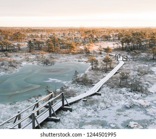 Panoramic view over the swamp in sunrise at Ķemeri national park, Latvia. First snow covering the iconic landscape. Sunlight shines over the frosty marsh.