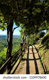 Panoramic view from a path in the Prosecco hills, Valdobbiadene, Italy