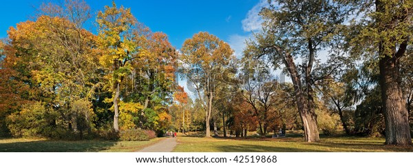 Panoramic view of the picturesque park on a sunny autumn day