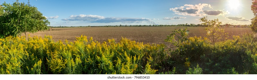 Panoramic view of a plowed agricultural ld surrounded by landscape.