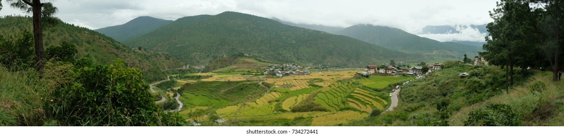Panoramic view of Punakha, Bhutan with rice terrace