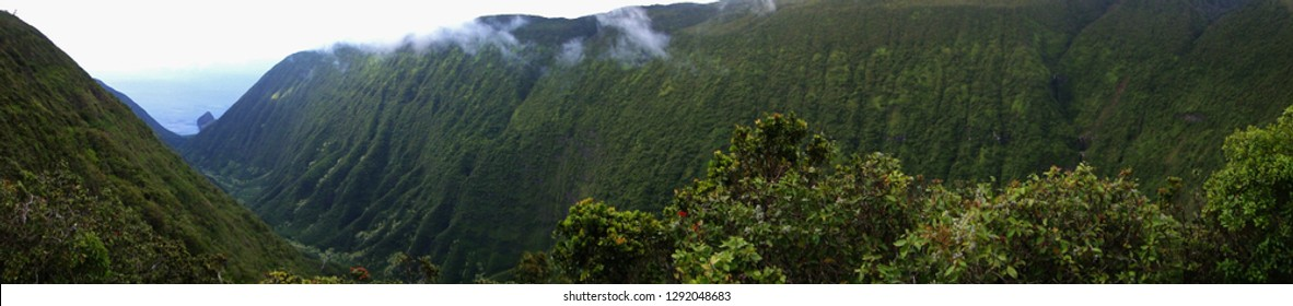 A panoramic view of a remote valley in Molokai