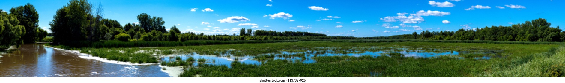 Panoramic view of a river and marsh in summer
