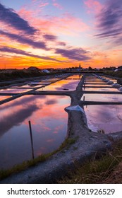 Panoramic view of the salt marshland at sunrise, Olonne area, Vendee, France