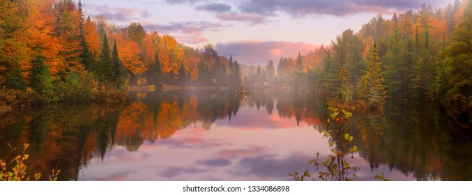 Panoramic view of scenic autumn landscape