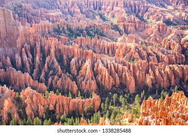 Panoramic view of scenic hoodoos in Bryce canyon national park, USA