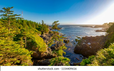 Panoramic view of the shoreline at wild pacific trail in Ucluelet, Vancouver Island, BC at sunset time.
