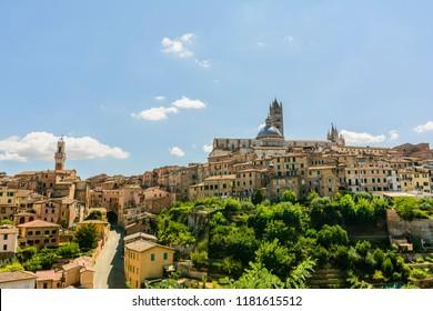 A panoramic view of Siena, Toscany. In this view there are the Cathedral (Duomo) and Tower of Mangia (torre del Mangia), two symbols of the city