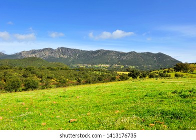 Panoramic view of Sierra Madrona in the Natural Park of the Valley of Alcudia, province of Ciudad Real, Spain