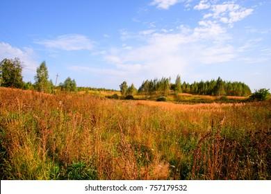 Panoramic view, A simple and straightforward plot