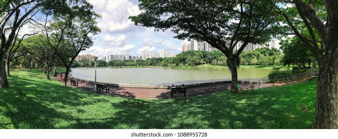 Panoramic view of Singapore Public Housing Apartments in Punggol District, Singapore. Housing Development Board(HDB), View from the park with green grass field and lake