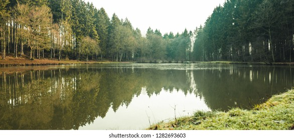 Panoramic view of a small lake in the forest, trees reflecting in the water