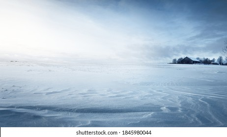 Panoramic view of the snow-covered field after a blizzard at sunset. Human tracks in a fresh snow. Old rustic wooden house in the background. Ice desert. Global warming theme. Lapland, Finland