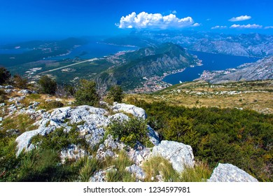 Panoramic view from the stone top of the mountain on the gulf and houses in the city between the mountains, hillsides in the grass and green trees. Aerial view of Kotor, Boka Kotorska Bay, Montenegro.