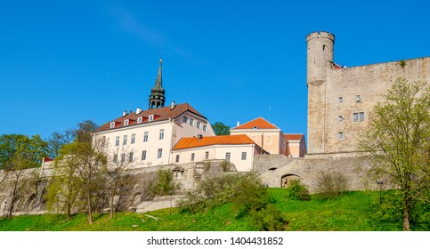 Panoramic view to Toompea Castle and St. Mary's Cathedral's tower on Toompea hill in the old town of Tallinn, Estonia, Baltic States, Europe