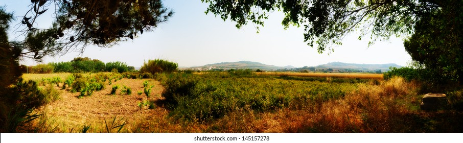 Panoramic view of typical Maltese country side in late spring looking out from near Kennedy Grove
