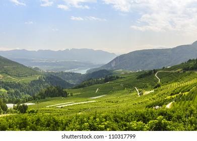 Panoramic view of the Val di Non (Trento, Trentino Alto Adige, Italy) at summer