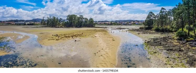Panoramic view of Vilanova de Arousa estuary at low tide with clam fishermen on the sandbars