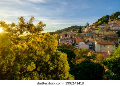 Panoramic view of the village Bormes-les-Mimosas. Mimosa trees in bloom. Sunset. Provence, France.