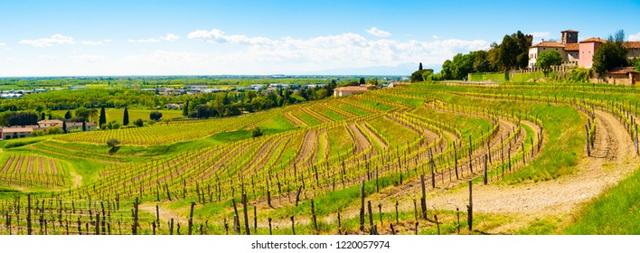 Panoramic view of vineyards and castle in Buttrio, Udine, Friuli, Italy