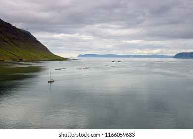 Panoramic view of the West Fjord in the NorthWest of Iceland.