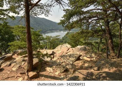 Panoramic view from Weverton Cliffs on the Appalachian Trail. The Potomac River and Short Hill Mountain in the background. A rocky plateau atop Weverton Cliffs, framed by evergreens on a summer day.