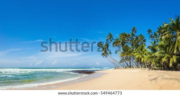 Panoramablick auf einen tropischen Wildstrand im südlichen Teil Sri Lankas bei sonnigem Tag.