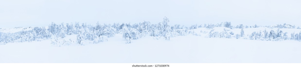 Panoramic view of winter landscape with snow covered trees in Beitostolen. Winter in Norway