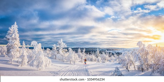 Panoramic view of young man cross-country skiing on a track in beautiful winter wonderland scenery in Scandinavia in scenic evening light at sunset with blue sky and clouds in winter, northern Europe