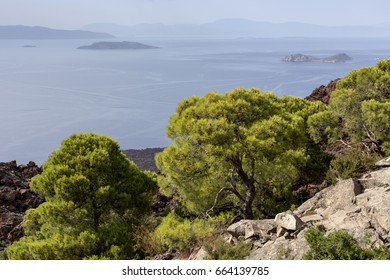 The panoramic views of the volcanic mountains, pine trees and the sea