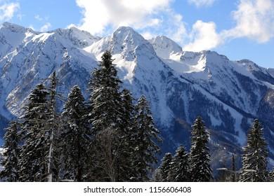 Panoramic views of winter snow-covered tops of the Caucasian ridge near Krasnaya Polyana.