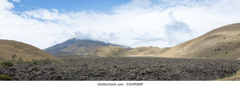 Panoramic volcanic landscape of Mount Cameroon national park.