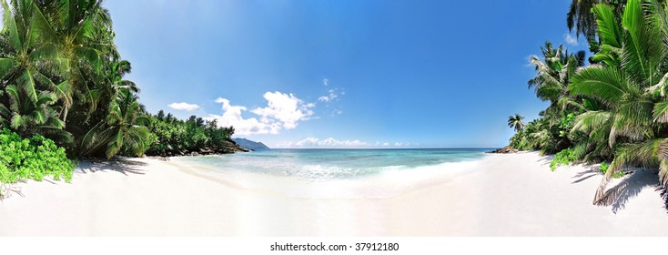 Panoramic vue of idle beach with palmtrees