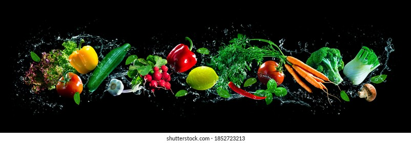 Panoramic wide black background with assortment of fresh vegetables and water splashes. High resolution collage for skinali