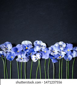 Pansy Flower Bouquet. Blue Flowers on Dark Background. Top view, Flat lay, Copy Space