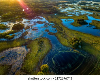 Pantanal photographed in Corumba, Mato Grosso do Sul. Pantanal Biome. Picture made in 2017.