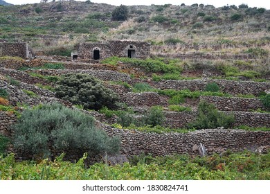 PANTELLERIA SICILIA ITALIA SETTEMBRE 2020 TYPICAL HOUSE OF THE ISLAND OF PANTELLERIA, THE DAMMUSO ARE THE RESULT OF THE ARAB CIVILIZATION AND THE WORK OF THE MANY PANTELLERIA FARMERS