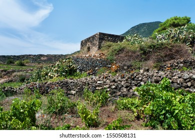 """Pantelleria, Sicily, Italy. An old """"dammuso"""", the typical building of the island."""