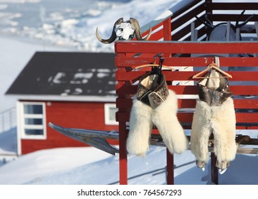 Pants for children made of polar bear skin hanging to dry in Ilulissat - Greenland.