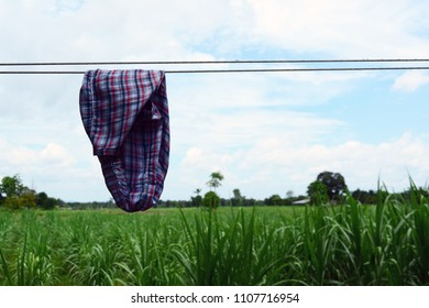 panty drying on clothline  in country side