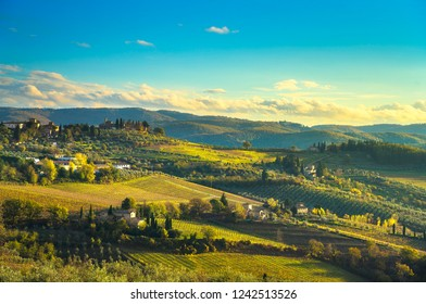 Panzano in Chianti vineyard and panorama at sunset in autumn. Tuscany, Italy Europe.