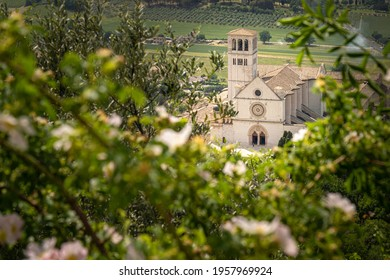 Papal Basilica of St. Francis of Assisi. Assisi, Umbria, Italy