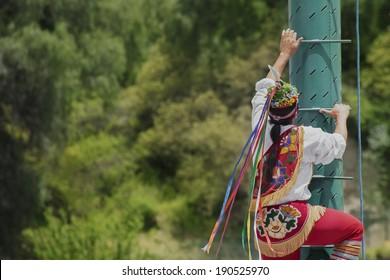 Papantla flyer climbing