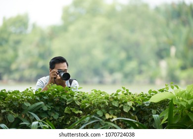 Paparazzi taking photos out of bushes in park