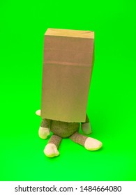 Paper Bag Monkey with Green Back Ground