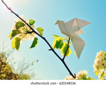 Paper birds on a blooming tree.