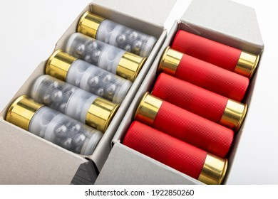Paper box with 12 gauge shotgun shells used for hunting isolated on white background