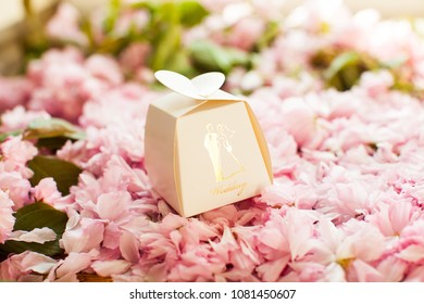 Paper box. Brown box. Branch of sakura with flowers and leaves. Cherry blossom , pink sakura flower isolated in white background.