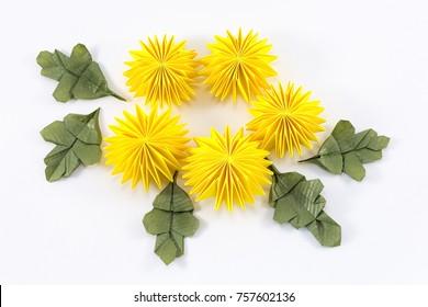 paper chrysanthemum origami on white background